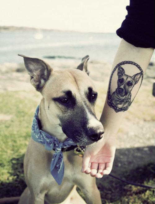 Dog-Tattoo-Design (1)