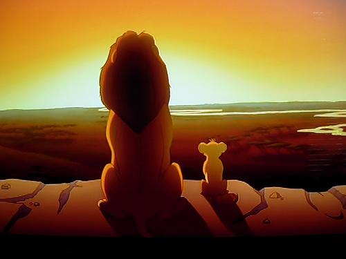 lion-king-land
