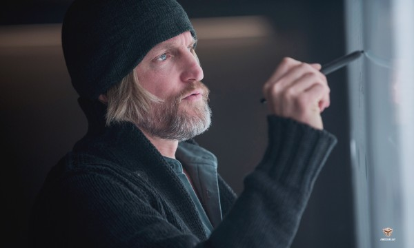 the-hunger-games-mockingjay-part-1-woody-harrelson-600x360