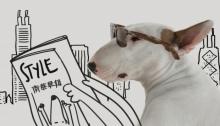j_dog