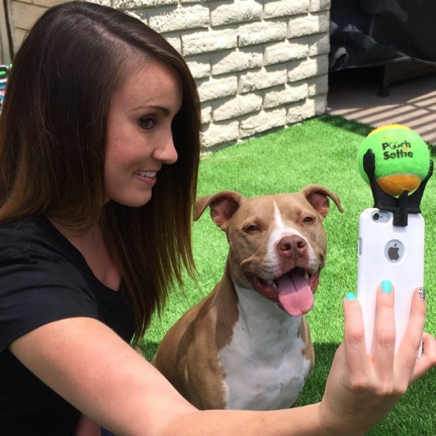 pooch-selfie-dog-1-635x635