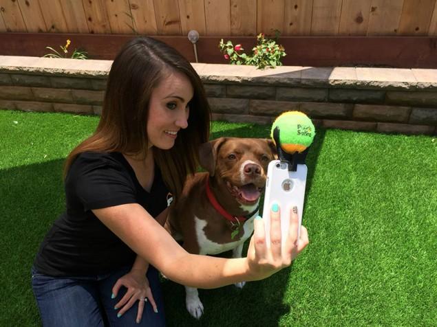 pooch-selfie-dog-6-635x476