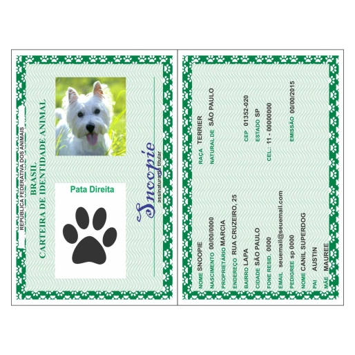 rg-documento-dog-cachorro-gato-korzus